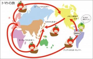 トマトの旅